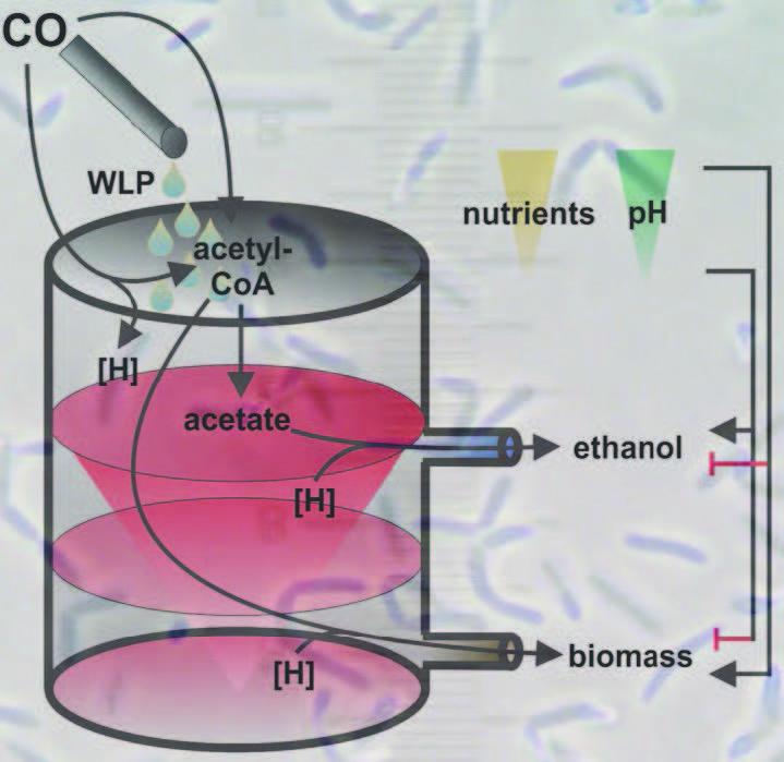 an essay on ethanol an alternative energy source